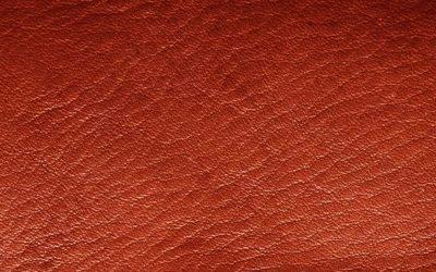 Exportación de pieles españolas para calzado internacional