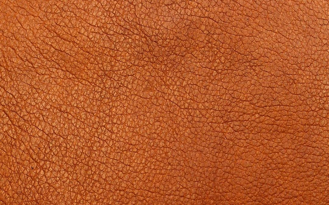 El tratamiento de la piel para la elaboración de calzado
